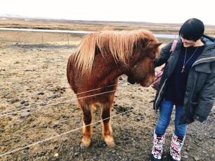 冰島🇮🇸_180421_0073