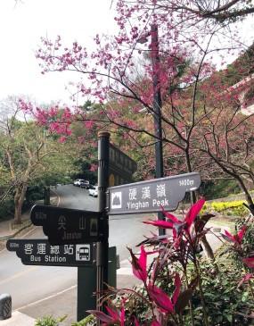 硬漢嶺_190228_0003
