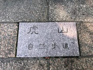 虎山_190624_0002